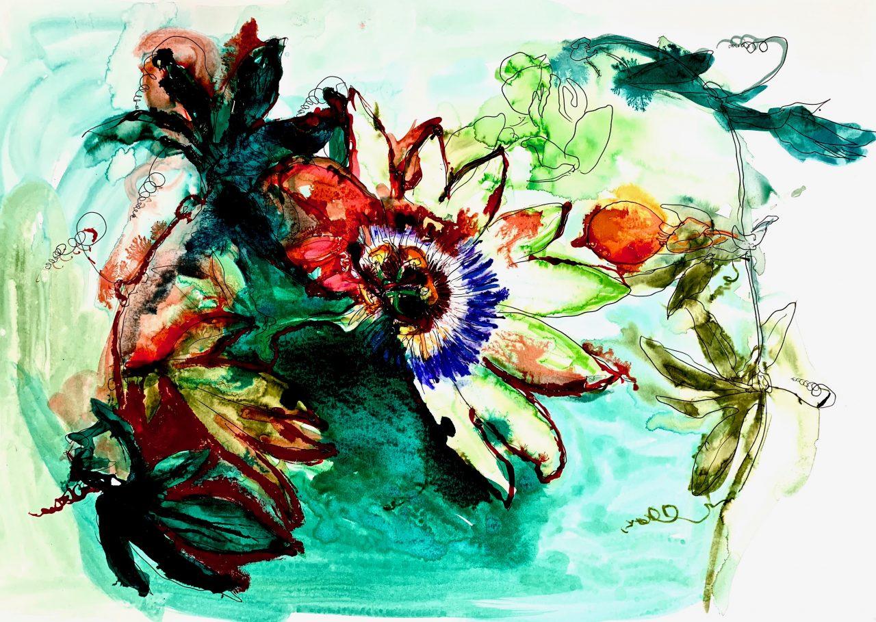 6 Fleur de la passion, encre sur papier, 42x56cm, 2018
